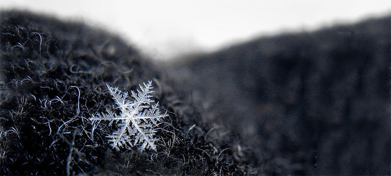 Be Unique, like a Snowflake | crystalpulse.co.uk