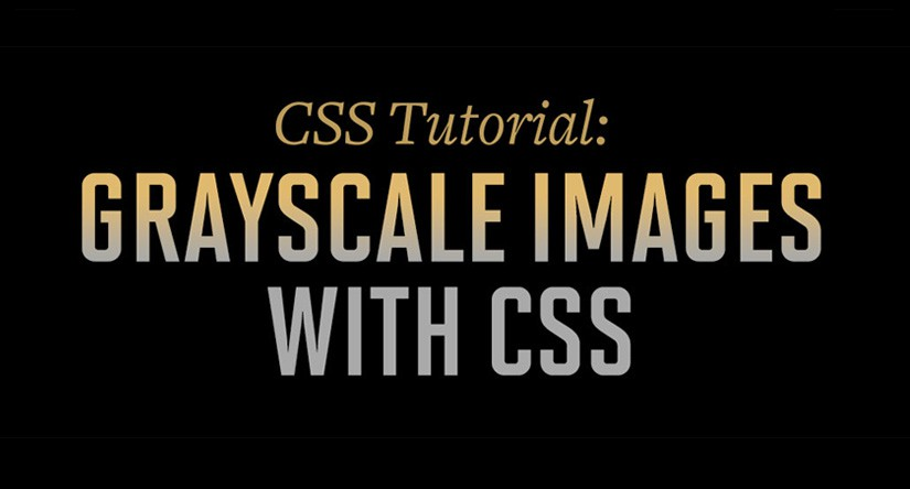 CSS Grayscale for Divi Header